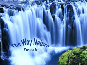 The Way Nature Does It.jpg