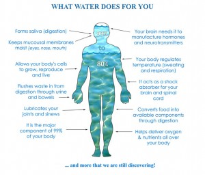 What water does for you